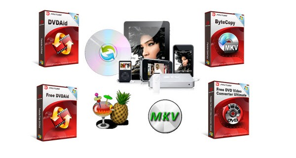 Top 5 Paid or Free DVD Ripper