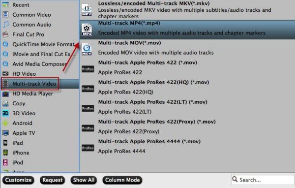 Multi-track MP4 format